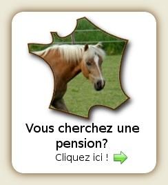 Consulter les pensions pour chevaux