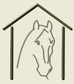 Logo cheval au box